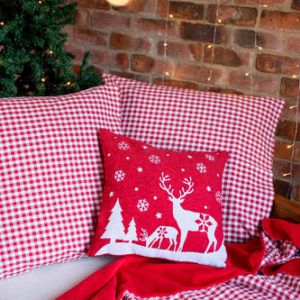 Red and White Gingham Three Piece Set